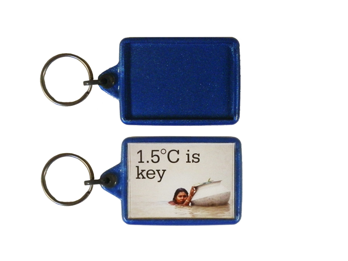 IL05 Recycled Keyring 35x50mm Blank